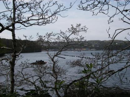 View from the path along Oban Bay