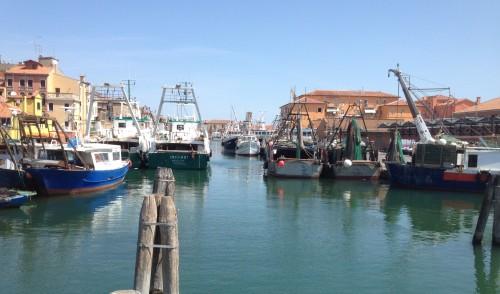Chioggia fishing harbour